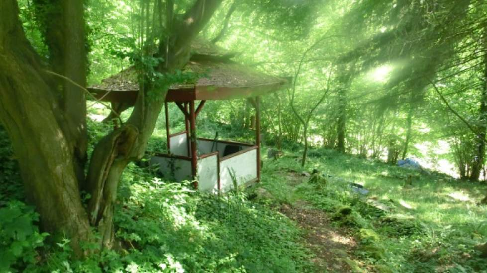 teehaus wald meditation retreat
