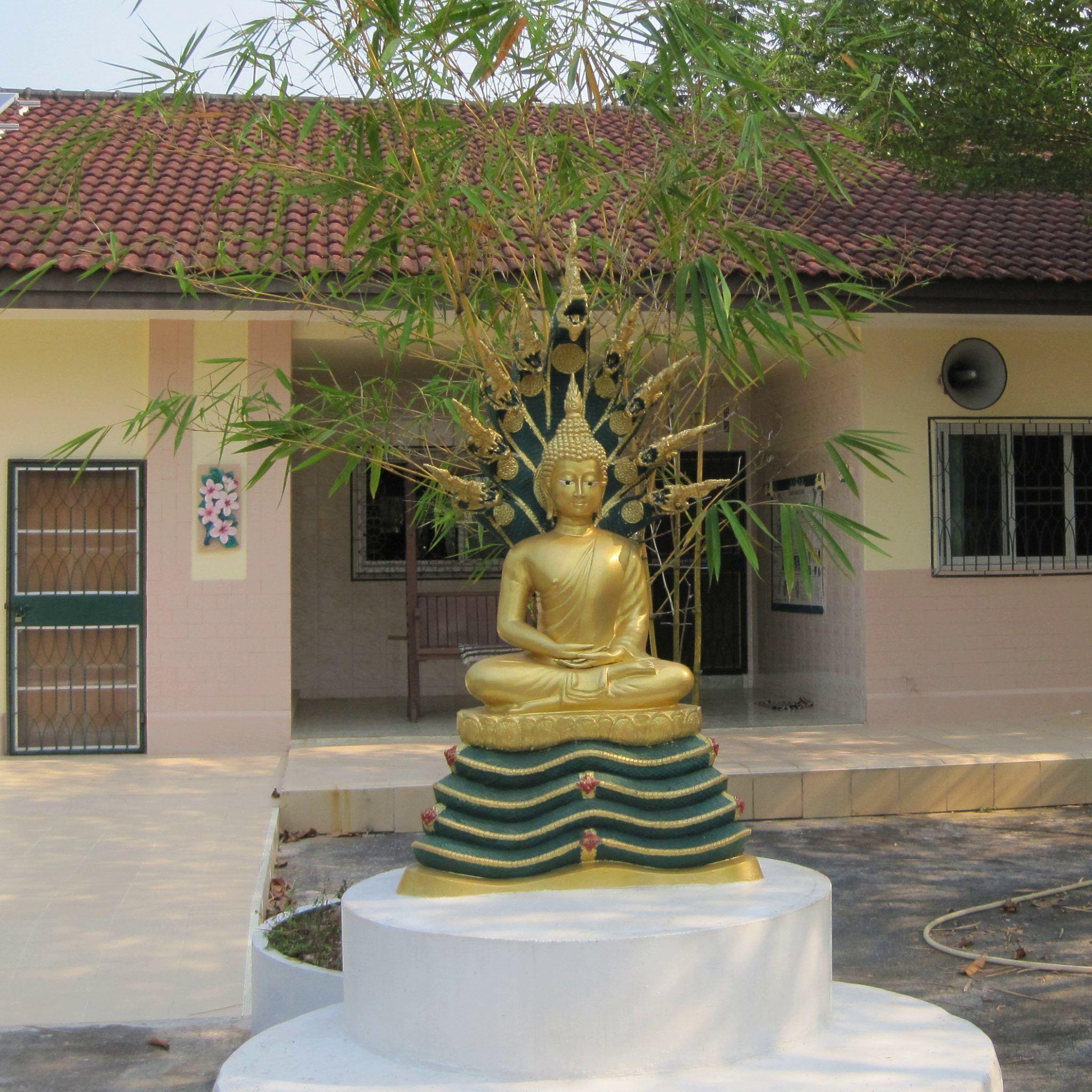 buddha nonnenkloster buddhirefuge