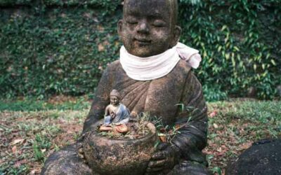 Was ist Buddha-Natur?