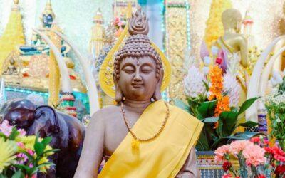 Kann ich ohne Meditation Buddhistin sein?