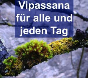vipassana meditation meditationsgruppe heidelberg
